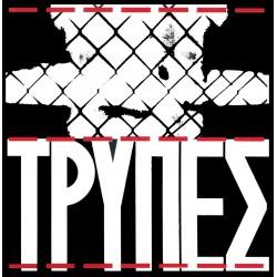 ΤΡΥΠΕΣ (CD)